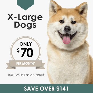 X-Large Dogs Wellness Plan, LakeCross Veterinary Hospital Huntersville